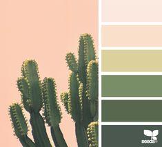 Decor cactus design seeds ideas for 2019 Green Color Pallete, Color Palate, Color Combos, Color Schemes, Beige Color, Mexican Colors, Desert Colors, Design Seeds, Le Far West