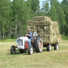 Do you think Hay Time deserves to win the Steiner Tractor Parts Photo Contest?  Have your say and vote today for your favorite antique tractor photos!