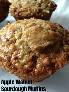 Apple Walnut Sourdough Muffins are made with a sourdough starter for that great tang, shredded apple for sweetness and walnuts for crunch. Sourdough Muffin Recipe, Sourdough Starter Discard Recipe, Sourdough Recipes, Sourdough Bread, Bread Recipes, Amish Recipes, Sandwich Recipes, Cake Recipes, Friendship Bread Starter