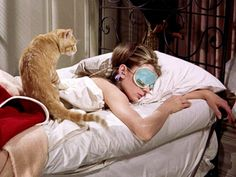 10 great films featuring cats