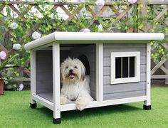Petsfit Outdoor Wooden Dog House for Small Dogs : Pet Supplies Dog House With Ac, Small Dog House, House Dog, Large Dogs, Small Dogs, Le Plus Grand Chien, Igloo Dog House, Grande Niche, Insulated Dog House