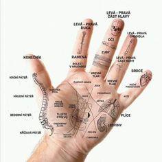 Acupressure Therapy, Acupuncture, Foot Massage, Palmistry, Health Advice, Alternative Medicine, Massage Therapy, Health Remedies, Health Fitness