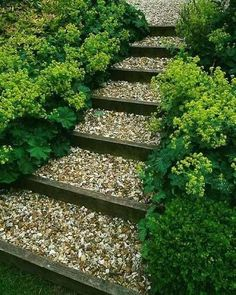 garden steps – this is the look I envision for your slope. With boulders placed randomly along sides.