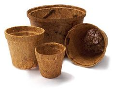For favors, we decided to do a seed packet + soil + pot (wrapped up in burlap and tied with twine). I liked these coir pots, until I realized that their smallest size was still too big! Lowes ended up saving the day, with their biodegradable peat pots.