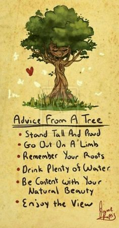 Great advise from Mother Nature....