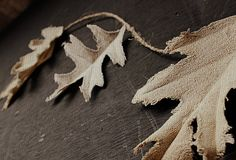 burlap leaves dipped in tea by Craftberry Bush...I'm thinking this would look awesome as a garland for a Woodland Christmas Tree!