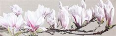 Flower Paintings by Sarah Caswell | Magnolia Swathe