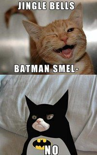 Batty Grumpy...