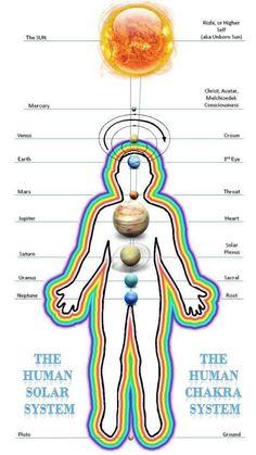 Collection of Human Frequencies - Reflexology - Chakra Charts - Energy Meridians - Hands, Feet, Tongue, Chakra Meditation, Kundalini Yoga, Chakra Healing, Chakra Chart, Chakra Affirmations, Mudras, Chakra System, Spirit Science, Chakra Balancing