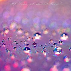 Crystal Purple Bubbles