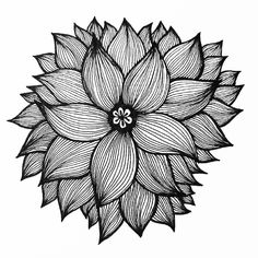 Doodle Art Drawing, Zentangle Drawings, Mandala Drawing, Zentangle Patterns, Art Drawings, Zentangles, Ink Doodles, Mandala Art Lesson, Tinta China