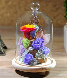 HPPFOTRS Handmade Preserved Rose Never Withered Roses Flower in Glass Dome, Gift for Valentine's Day Anniversary Birthday, with LED Flash Light (Gift box package) *** Visit the image link more details. (This is an affiliate link) #HomeDecorIdeas