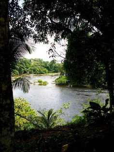 I'd like to viist every country in South America if we move to Ecuador. Even you, lovely little Suriname. Ecuador, Travel Around The World, Around The Worlds, Places To Travel, Places To Visit, South America Travel, Amazing Nature, Nice View, Travel Photography