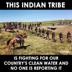 Support Native Americans and Standing Rock. Native American Spirituality, Native American Wisdom, Native American History, American Indians, American Symbols, American Women, American Art, Historical Quotes, History Facts