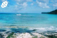 ¡Esta semana le traemos a nuestra bloguera invitada Pamy Rojas hablando sobre la Isla de mona!