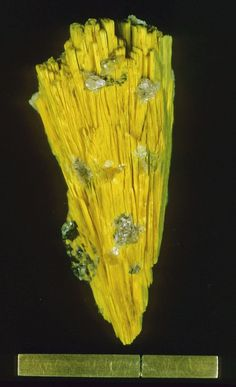Nováčekite-I. Mina Pedra Preta, Serra das Éguas, Brumado, Bahia, Brésil Taille=44 x 18 mm Photo Rock Currier