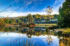 Peppers Cradle Mountain #Tasmania #Australia    http://www.tripadvisor.com.au/ShowForum-g255096-i887-Tasmania.html