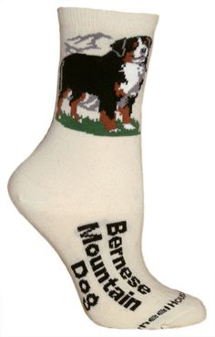 Bernese Mountain Dog Socks - Tan