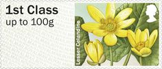 Post & Go: Spring Blooms - British Flora 1 1st Stamp (2014) Lesser Celandine