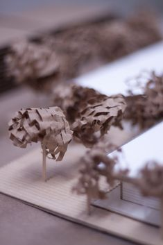Trees - Taubman College of Architecture