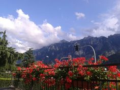 Trentino Alto Adige, Scurelle.
