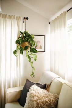 New Darlings - Guest House Remodel - #hangingplants #sleepersofa #potterybarn #curtains