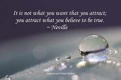 """""""It is not what you want that you attract; you attract what you believe to be true."""" - Neville"""