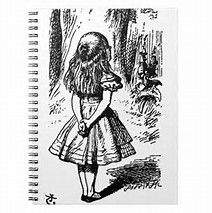 Image result for alice in wonderland original book