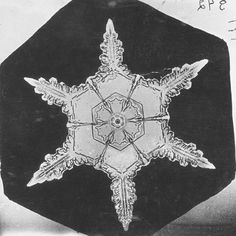 In 1885, at the age of 20, Wilson Alwyn Bentley, a farmer who would live all his life in the small town of Jericho in Vermont, gave the world its first ever photograph of a snowflake. Throughout the following winters, until his death in 1931, Bentley would go on to capture over 5000 snowflakes, or more correctly, snow crystals, on film. Despite the fact that he rarely left Jericho, thousands of Americans knew him as The Snowflake Man or simply Snowflake Bentley.