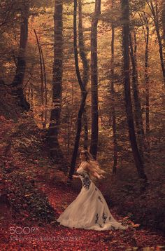 Autumn Bride III - Pinned by Mak Khalaf I recently discovered stitching as a means to compensate for my incomplete set of lenses for medium format. Fine Art Switzerlandautumnbridefallforestwarm colors by obsoquasi