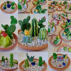Ceramic Cacti Gardens middle school/ high school