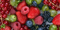 Frutos silvestres mantêm o cérebro jovem   SAPO Lifestyle