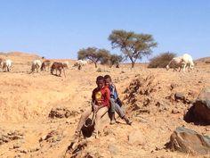 Bambini e pecore nella stessa scuola  Oggi abbiamo visitato 140 bambini!