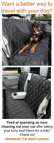 Want A Better Way To Travel With Your Dog If You Are Tired Of Having Fur And Dirt All Over Car After Taking Furry Best Friend For Ride