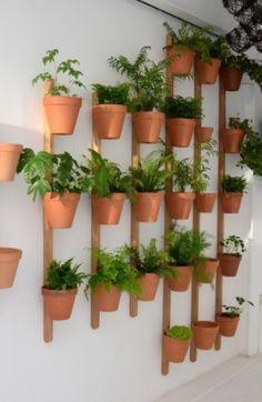 XPOT, fixation murale pour plantes, chêne massif ou couleurs, design Pascal Grossiord, Compagnie, chez Made in design. #plantes #mur #végétal #pot #intérieur