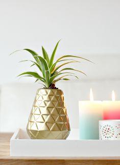 DIY ananasvaas - Beautylab