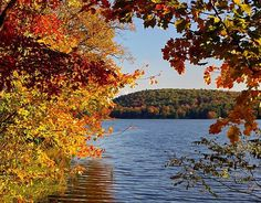 Collection of Beautiful Fall Foliage Pictures