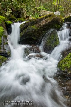Great Smoky Mountains National Park, Tennessee.