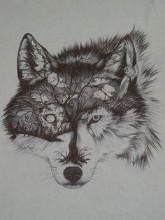 Resultado de imagem para sketch wolf tattoo