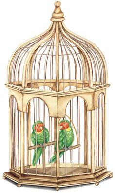 #Birds #Cage #Liberation #Fly #Samsara