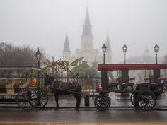 15 Best New Orleans Ghost Tours That Will Creep You Out - Southern Trippers Ghost Tour, Travel Ideas, New Orleans, Southern, Tours, Vacation Ideas