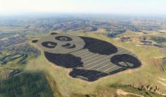 This panda-shaped solar farm sets a new bar for cute creativity. Panda Power Plant in Datong, China is a multiphase solar farm building panda-shaped solar arrays. What Is Green, Go Green, Solar Energy System, Solar Power, Wind Power, Foyers, Solar Water Heater, Energy Companies, Energy Resources