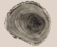 woodcut prints by bryan nash gill