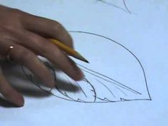 How to draw an acanthus leaf