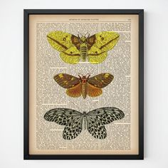 """Wall art, Insect decor, Upcycled, Moth art, Insect dictionary print, Digital download art, Printable wall decor, Illustration vintage, JPG.  All dictionary prints: https://www.etsy.com/shop/LizasDictionaryArt  YOU WILL RECEIVE 300dpi RESOLUTION 2 JPG FILES!!!  1 JPG file at 8X10 inches; 1 JPG file at 11X14 inches.  IF YOU PREFER ANOTHER SIZE of this print you may request a custom order and I will resize it. Just press the button """"Request custom order"""", write dimensions and..."""