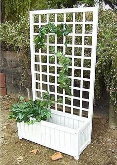 The Garden Planter Box with Trellis is a simple and naturally beautiful way to bring climbing vines or flowers to your garden, patio, or to the side of your home | Outdoor Areas