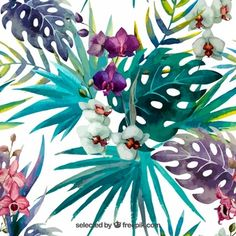 http://img.freepik.com/free-vector/hand-painted-tropical-plants_1002-22.jpg?size=338&ext=jpg&ve=1