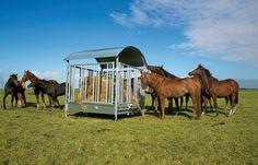 Hooiruiven voor in de weide http://www.cavalo.nl/weide/weideruiven-hooiruiven.html