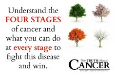 Doctors use stages of cancer to describe the severity of a cancer diagnosis. Click on the image to discover what the stages mean and strategies to use at each stage to heal.