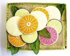 """Citrus Slices"" by Kath Shadbolt"